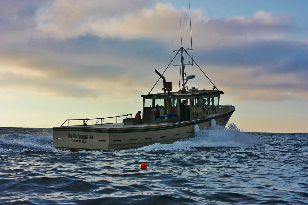 Commercial fishing boat leaves Cheticamp harbour during the Nova Scotia lobster fishery. Many people in the industry look for options of electric boats.