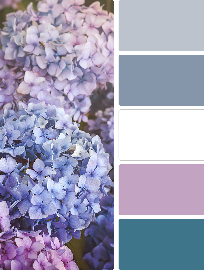 Sherwin Williams – Daydream (SW 6541), Sherwin Williams – Dried Lavendar (SW 9072), Sherwin Williams – High Reflective White (SW 7757), Sherwin Williams – Novel Lilac (SW 6836), Sherwin Williams – Turkish Tile (SW 7610)