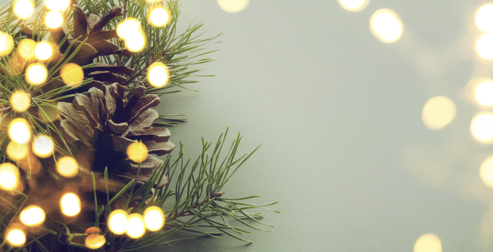 Christmas Decorating, Christmas Decor, Holiday Decor, Holiday Decorating, Festive Christmas Decor, Christmas Decorator, Christmas Decorating Service, Holiday Decorating Service, Christmas Living Room Decor. Asha-Maia Design | Interiors + Events - Alexandria, VA 22302. Serving the Alexandria, VA, Washington, DC and surrounding areas. Christmas Decorating, Christmas Decorator, Holiday Decorator, Holiday Decorating, Interior Design, Interior Designer, Interior Decorator - Owner & Lead Designer Asha Maxey
