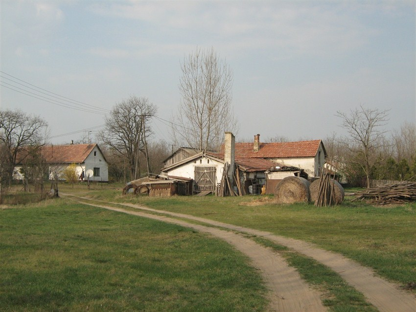 GabiHungary2