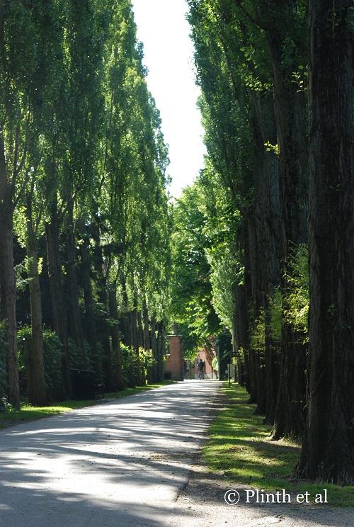 Poplar Walk