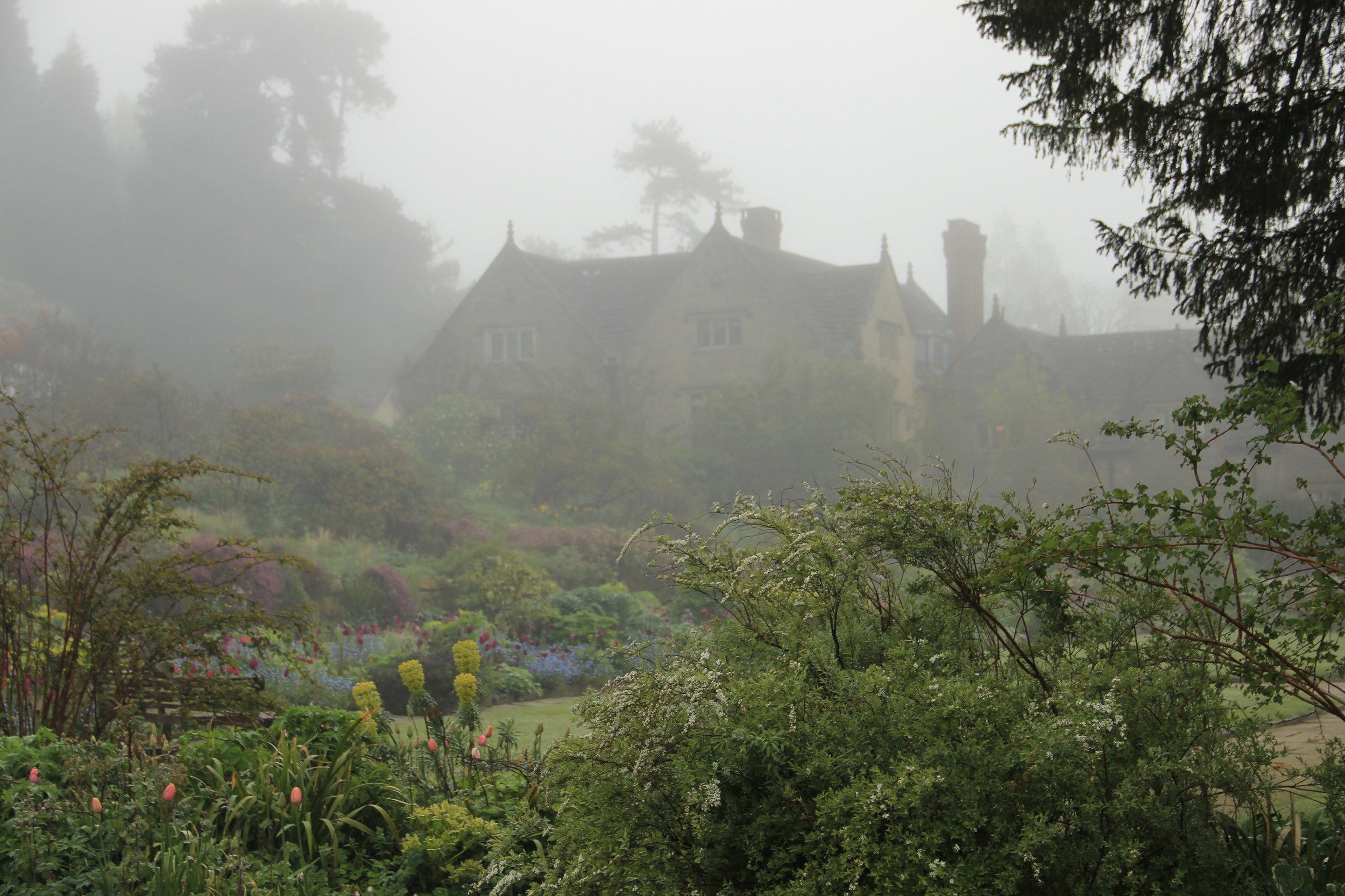 Flower Garden Fog