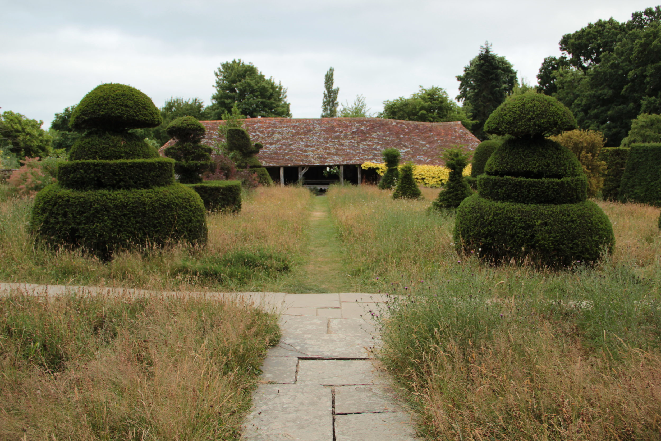 Great Dixter Topiary Lawn, 2013