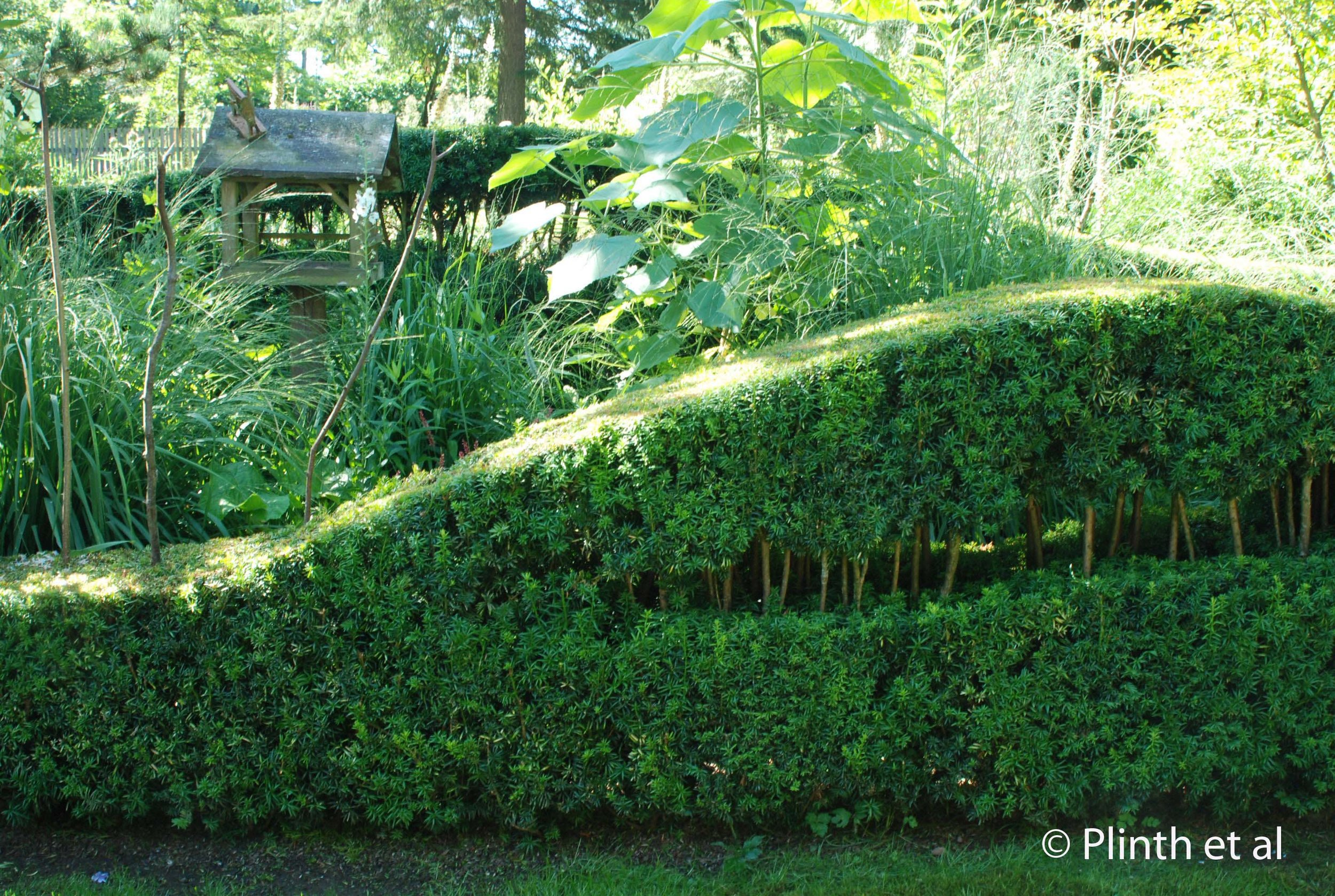 The hedging at Free Spirit is modernist and quirky, reflecting the continental European technique of using hedges and topiary  as a framework for lush herbaceous plantings.