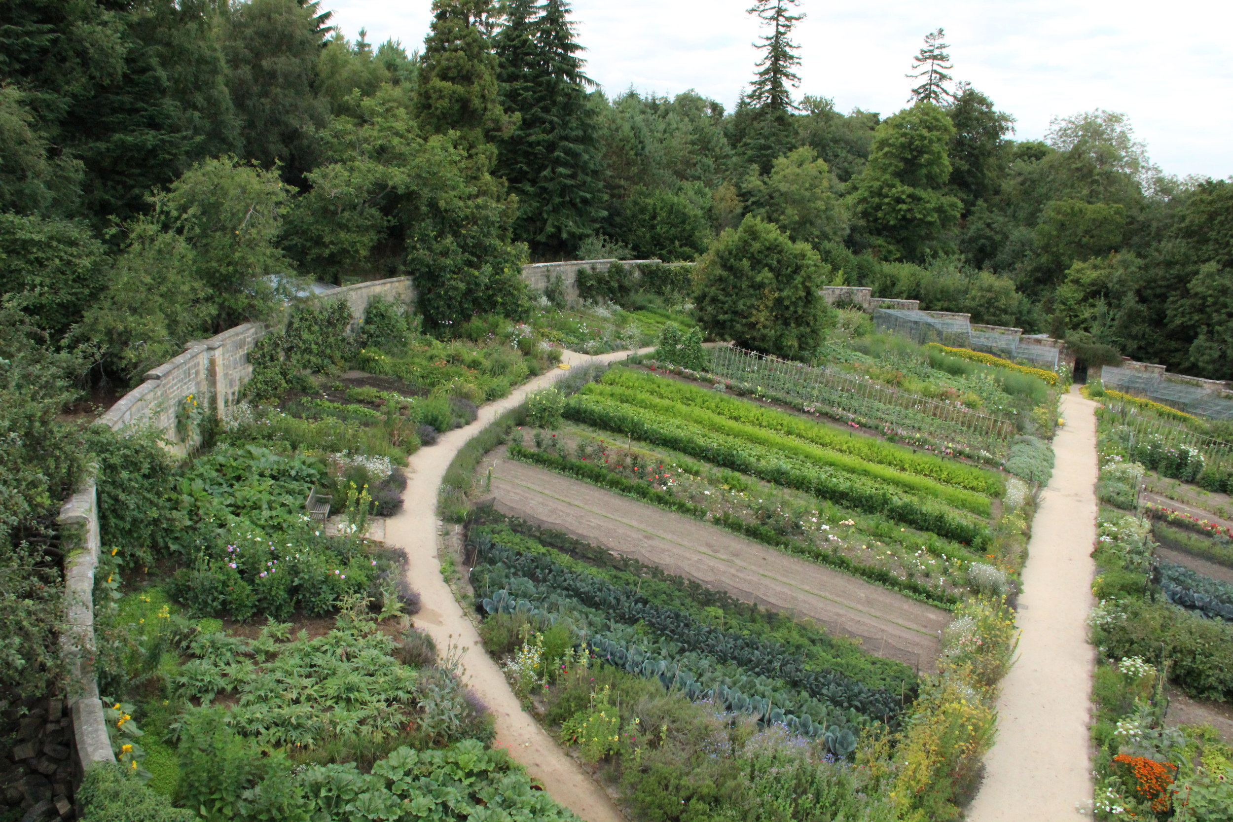 Gravetye kitchen garden