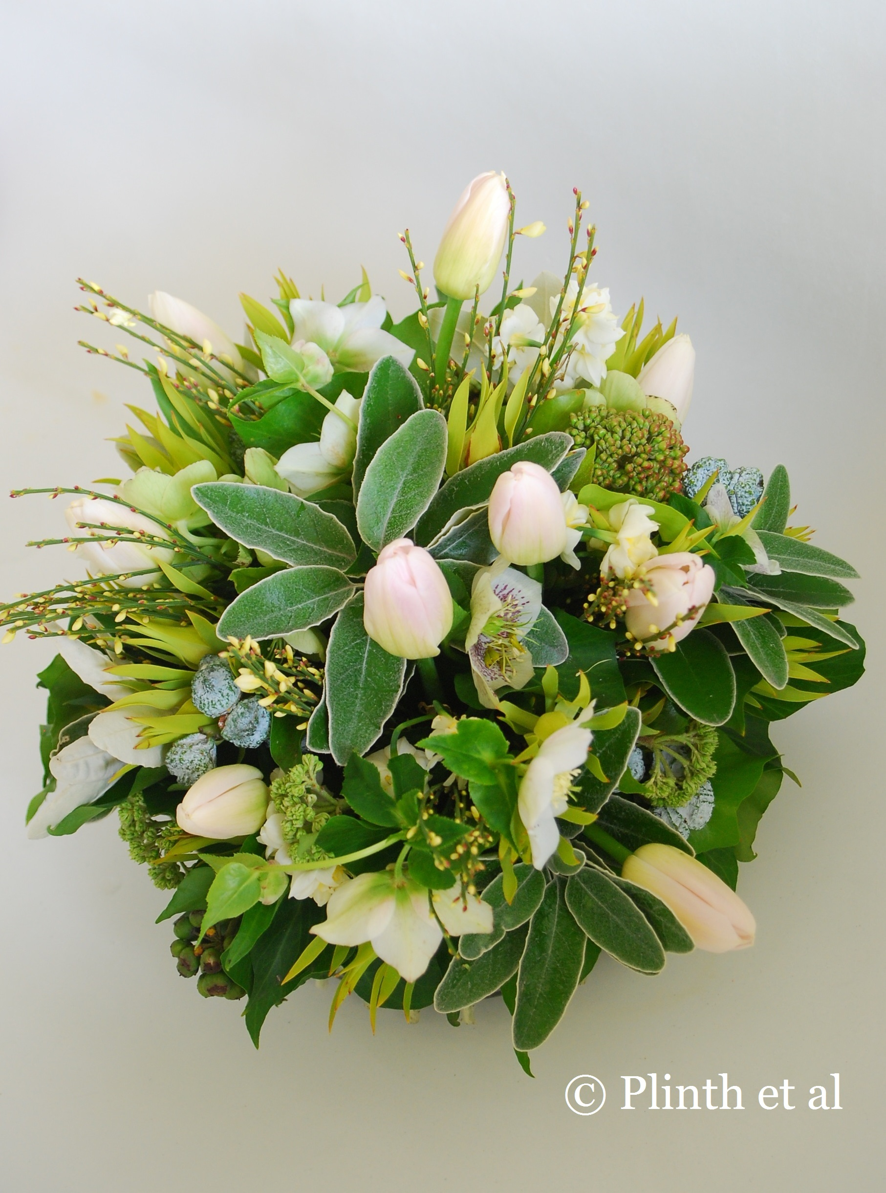 Cropped Tulipa Arrangement