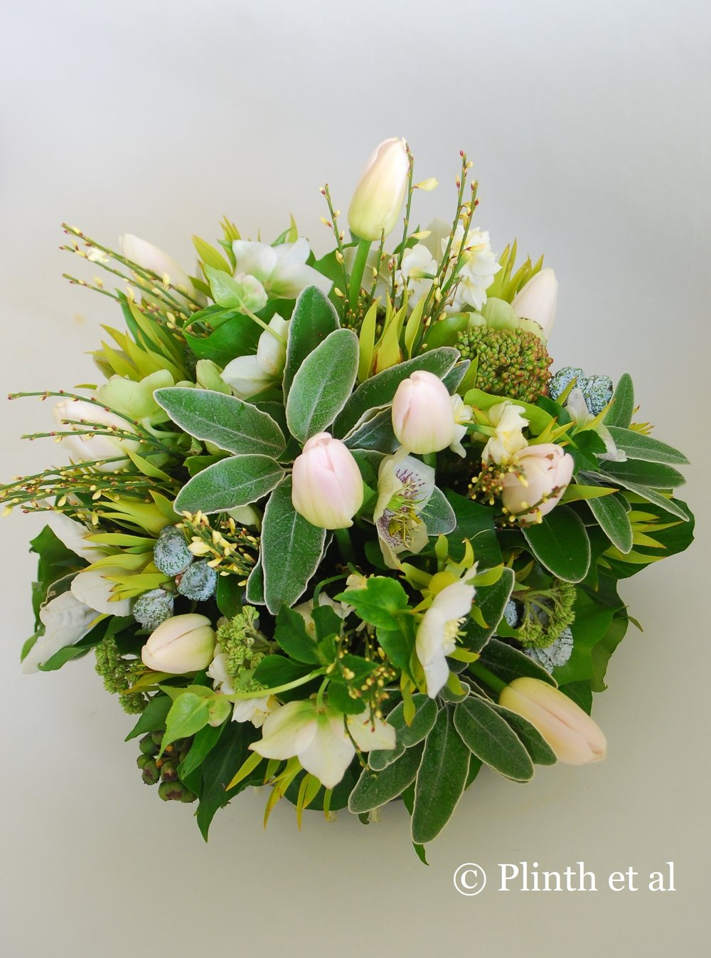 cropped-tulipa-arrangement.jpg