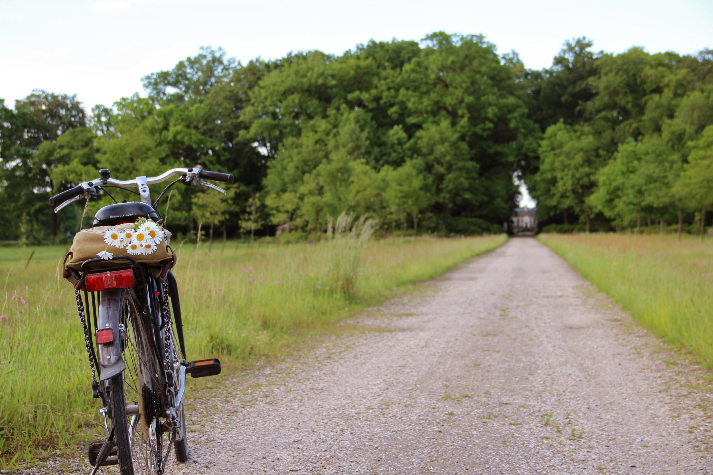 DeWiersse bike image