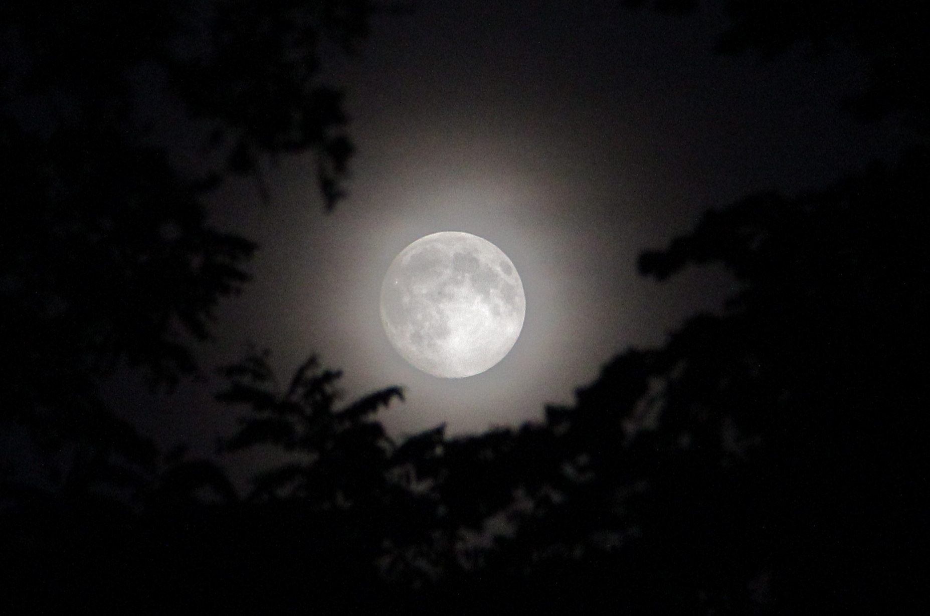 Super moon from Saturday night