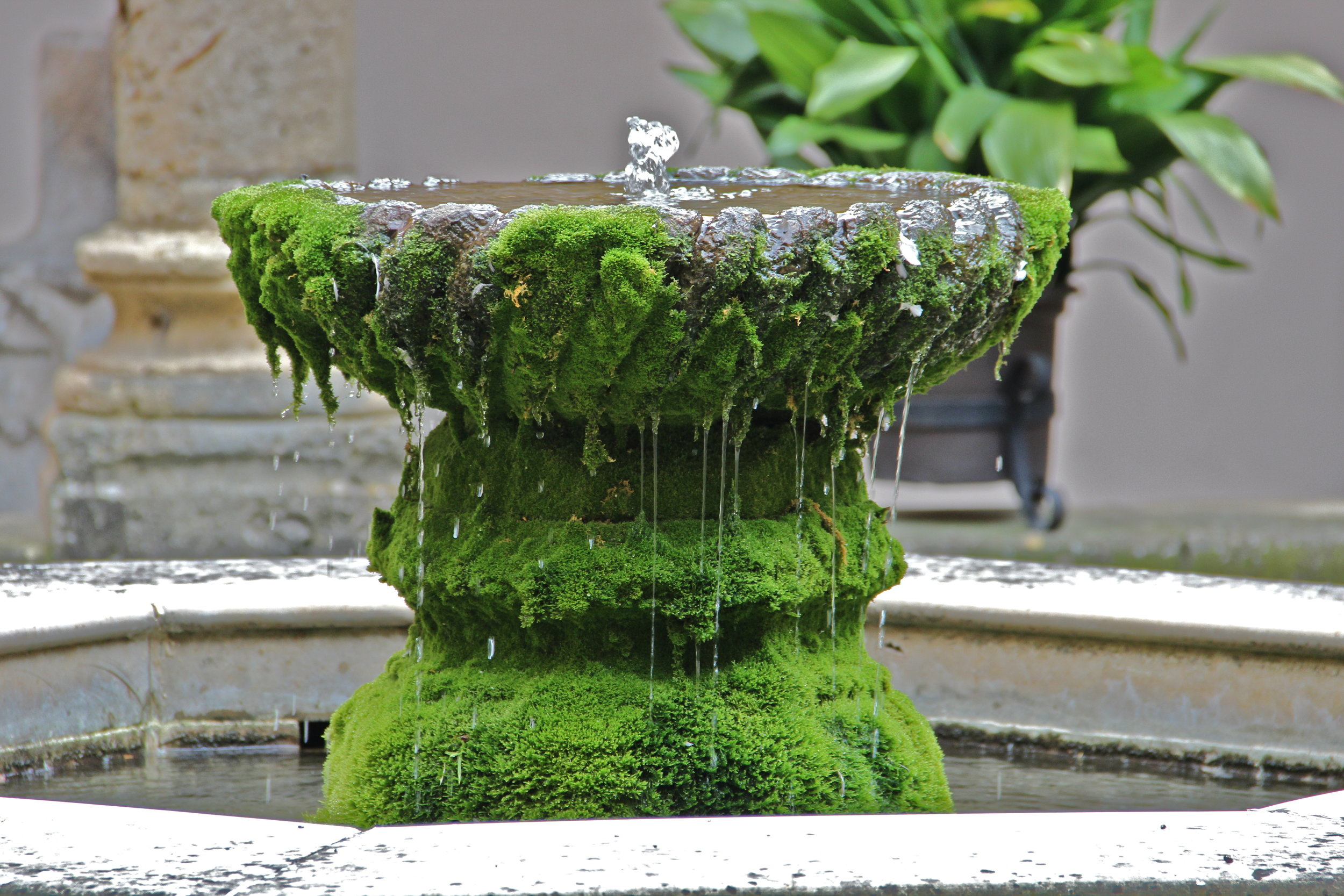 moss covered fountain, Segovia