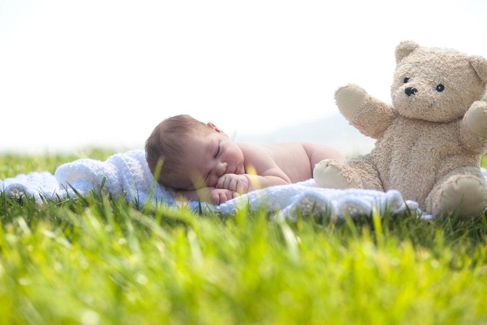 Teddy and his Teddy Bear!