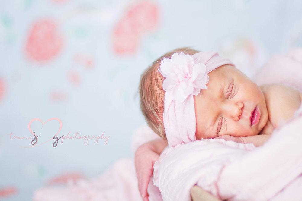 marble fall newborn photographer