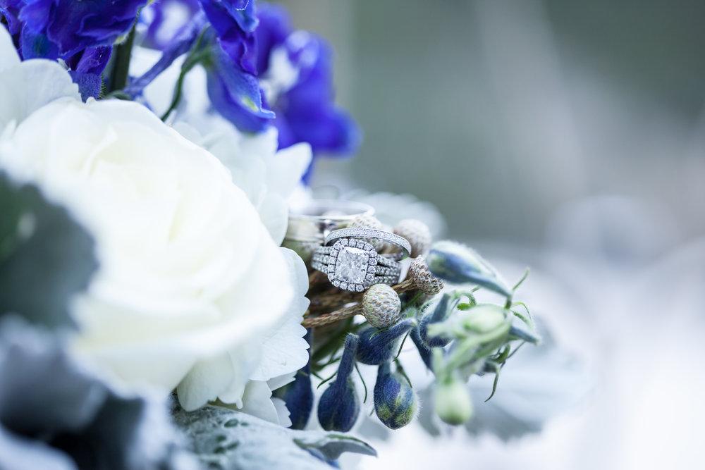 Flowers by florist ,Visual Lyrics
