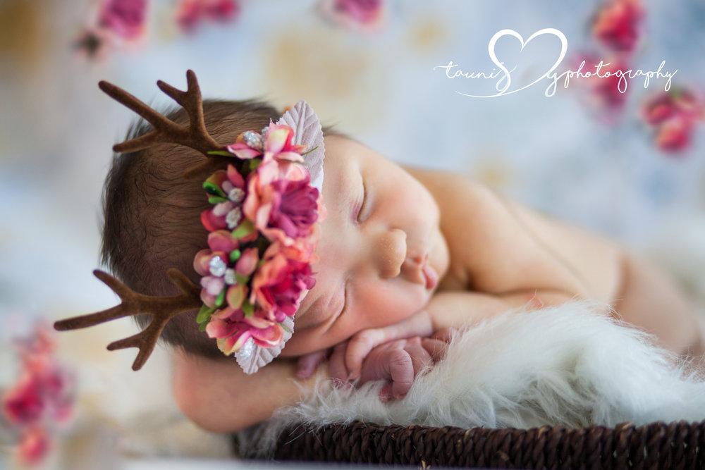 newborn baby girl photographer tauni joy photography
