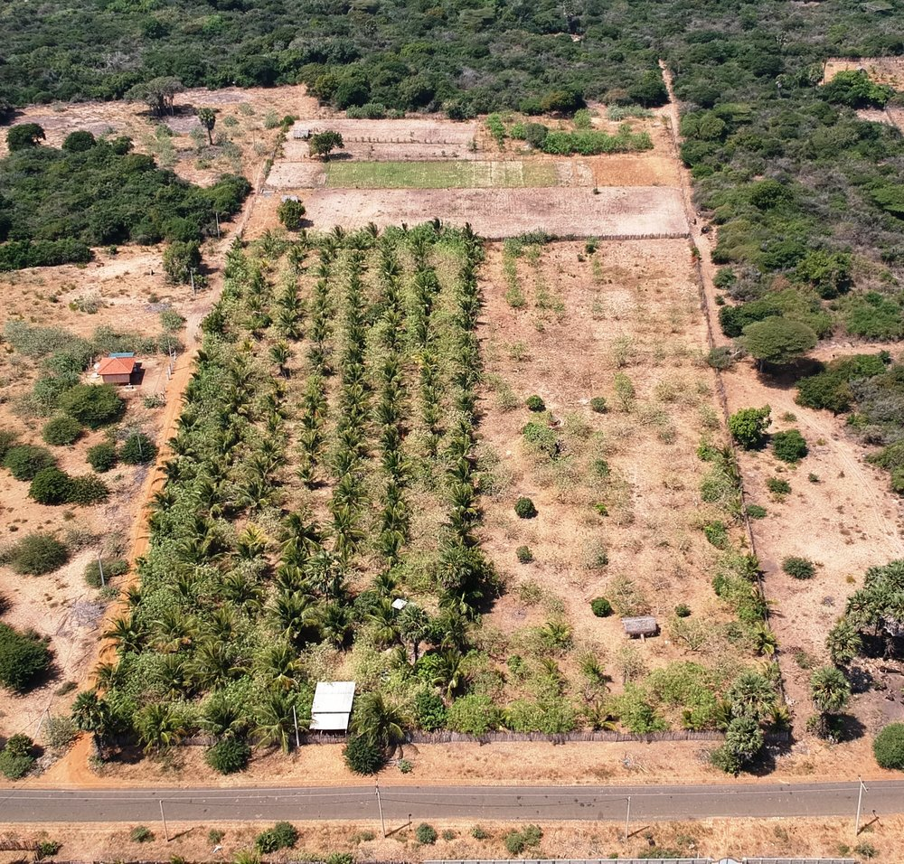 Aerial photo of purchased land.jpg