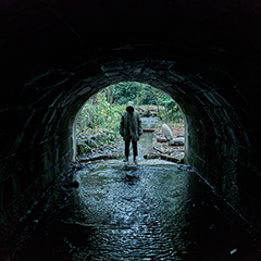 GHOST STORIES Directors Jeremy Dyson, Andy Nyman Arch skeptic Professor Phillip Goodman embarks upon a terror-filled quest when he stumbles across a long-lost file containing details of three cases of inexplicable 'hauntings'.