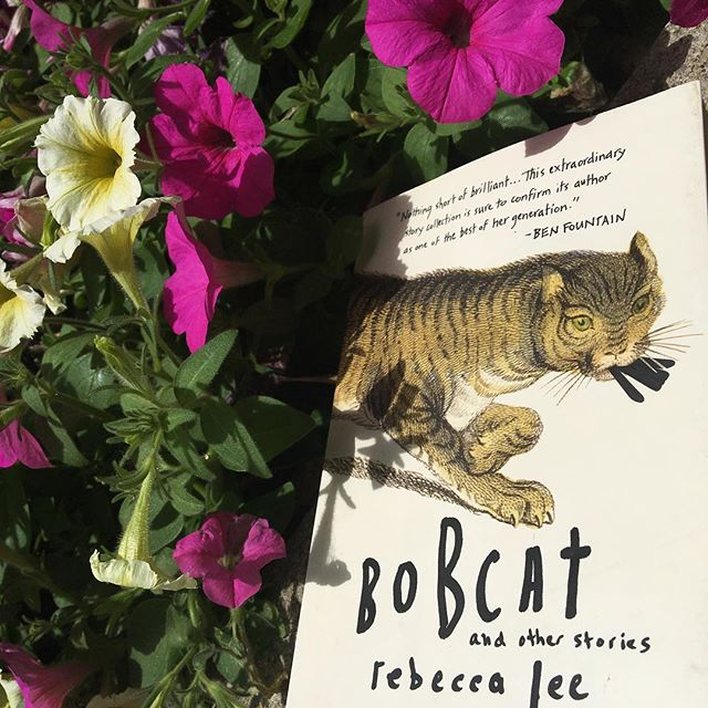 """Today I reread """"World Party"""" on my lunch break. Each time I read one of the stories in Rebecca Lee's Bobcat, I'm awed anew and reminded of the kind of reverence with which I wish we all moved beside each other in this world. What texts do you return to to remember beauty and kindness and tenderness?"""