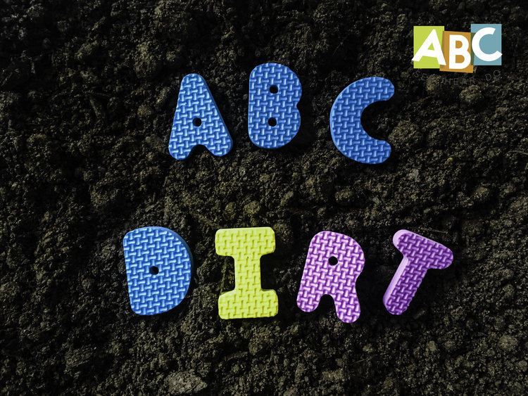 Letter D Crafts And Activities Abc See Hear Do