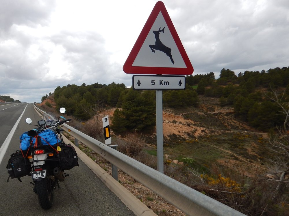I guarantee every five kilometres from Calais to Malaga was one of these signs. For the whole 2000km I only saw one deer, way off in a field, not the least interested in crossing the road. I did however come across many tractors, some towing farm machinery or trailers of produce. I loved seeing this as its one of the reasons my Home is in Sulphur Creek. We get tractors going down the Main Street.