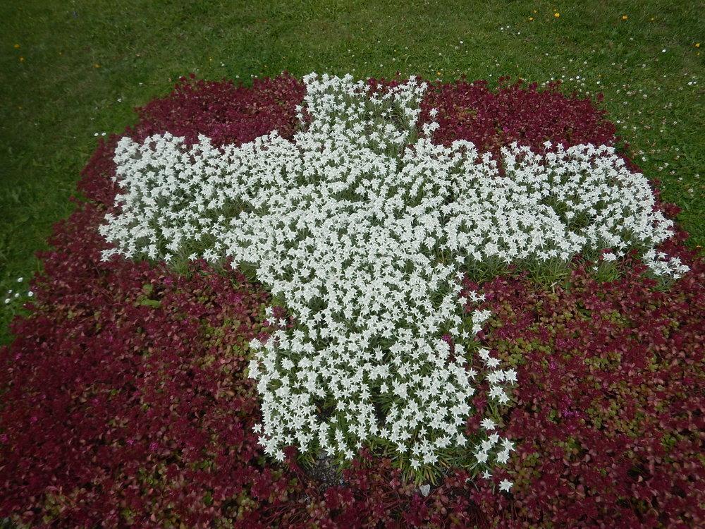 S for Swiss flag, a feature in the Schatzalp garden.