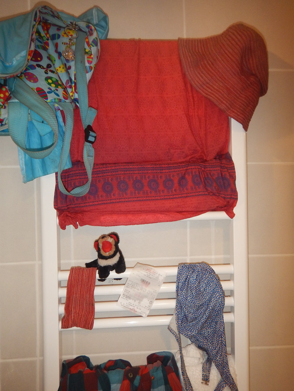 all my wet belongings hanging on the towel drying rack in my bathroom. I even had to wring the water out from poor old Harri.