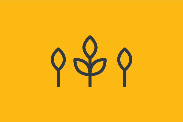 growth-yellow.png