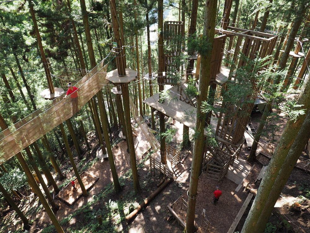 Forest Adventure Iya Valley 3