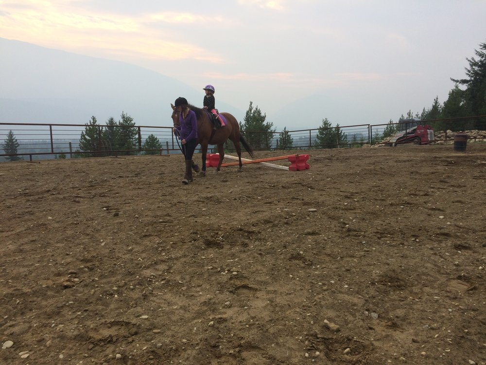 Leadline Ride $40 - 1. 5 hour long introduction to horses and riding. Learn how to safely groom and tack a horse for riding. Learn basic information on horse handling and care. Includes a leadline ride with riding instruction suitable for ages 4+.