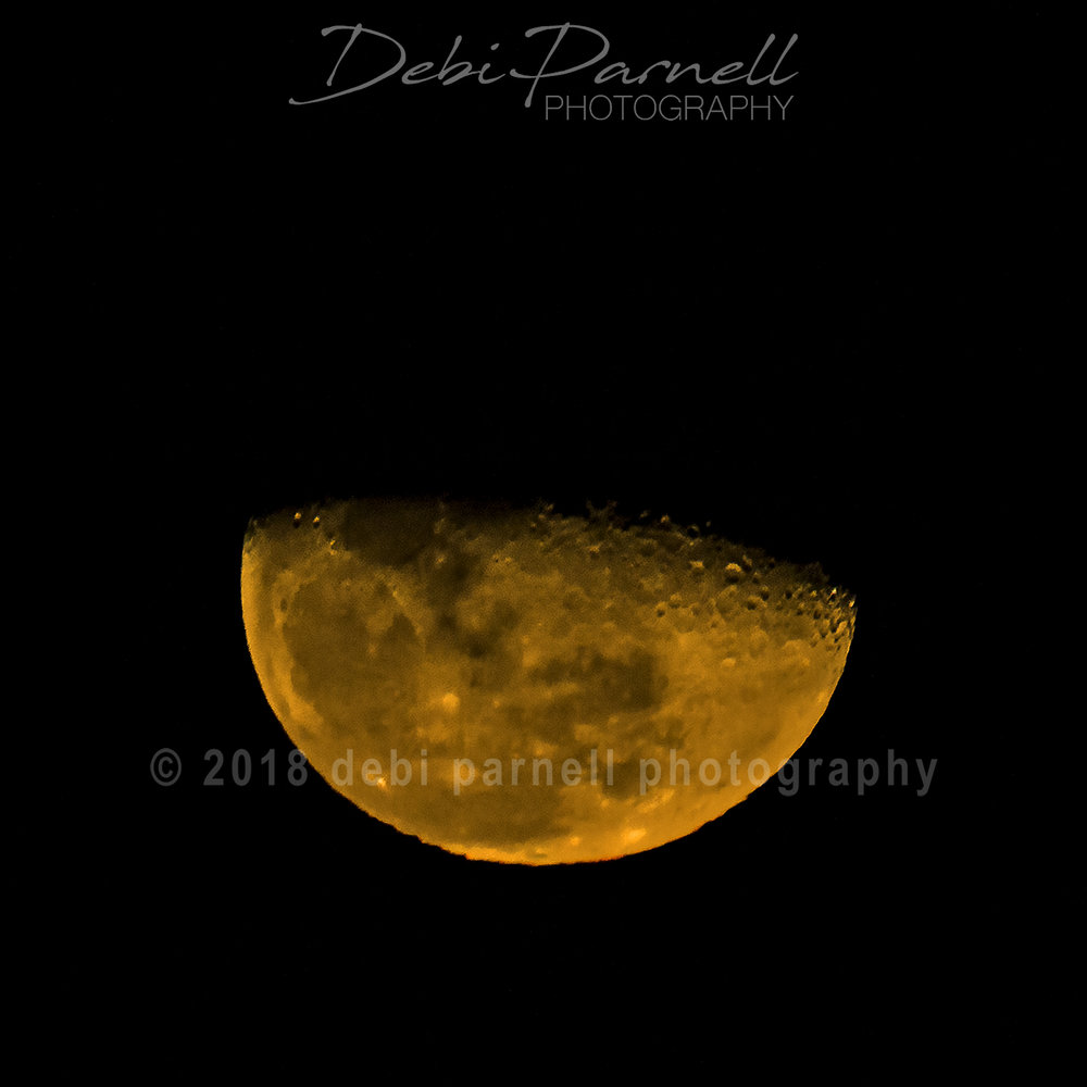 Orange Moon 1.5.18_WEB.jpg