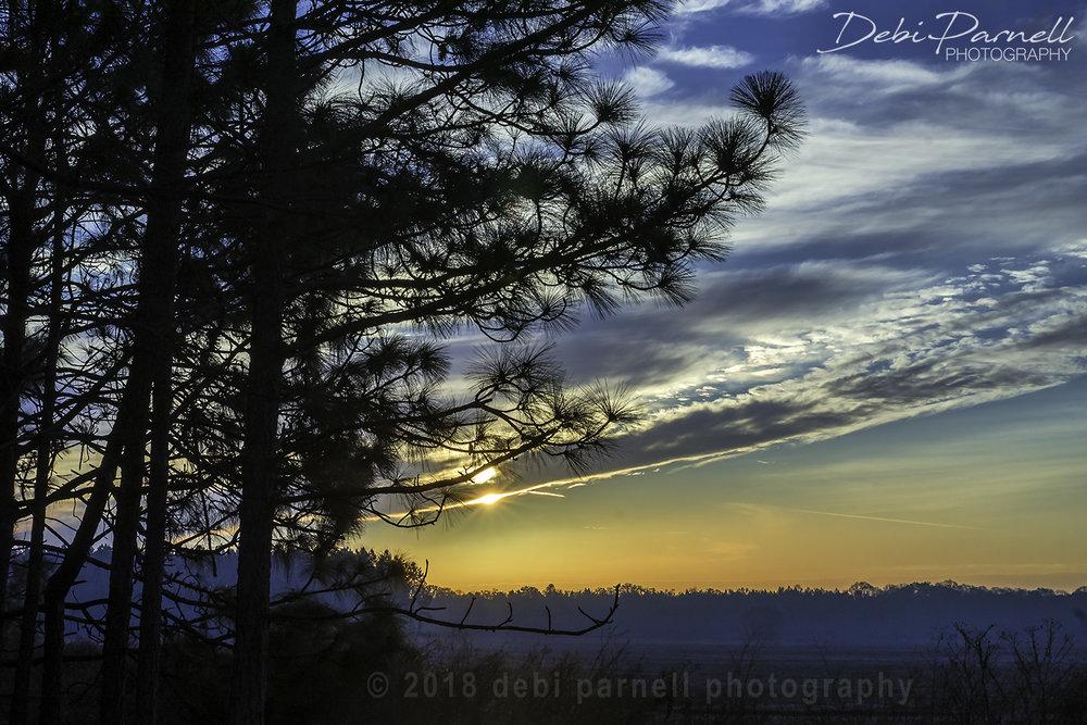 Pine Framed Sunrise LS-008