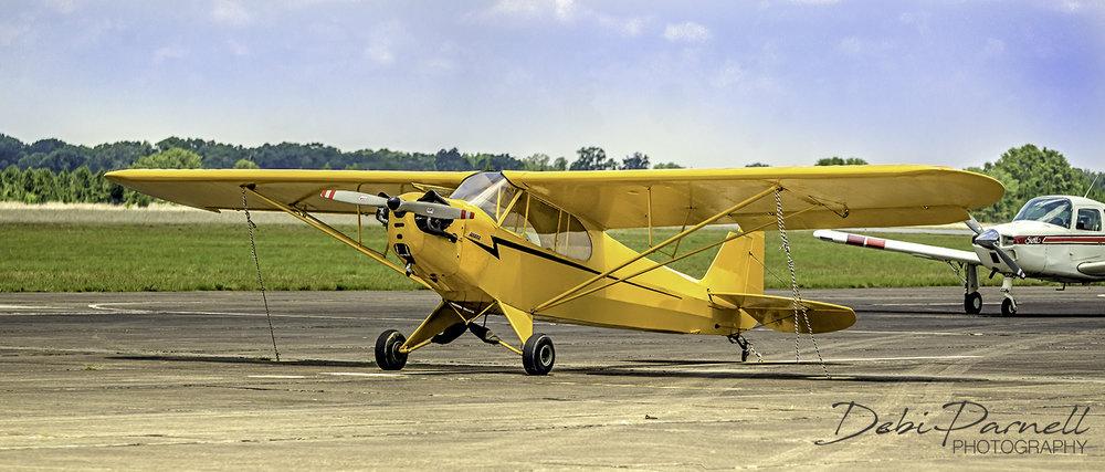 Yellow Plane cub pano_WEB.jpg
