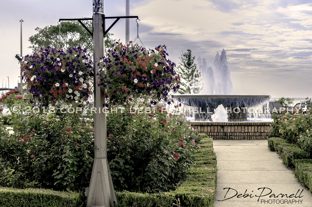 Fountain and Flowers LS-024