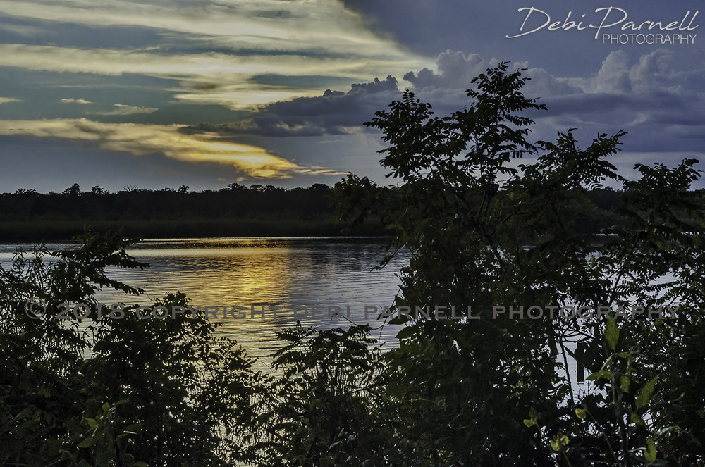 Daybreak LS-028