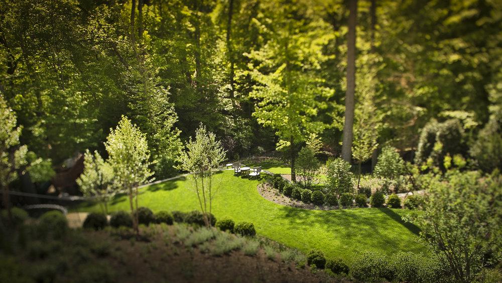 rear_lawn-0634-2.jpg