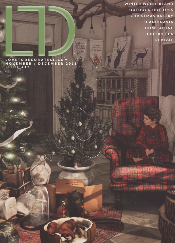 LTD MAGAZINE Nov/Dec 2016