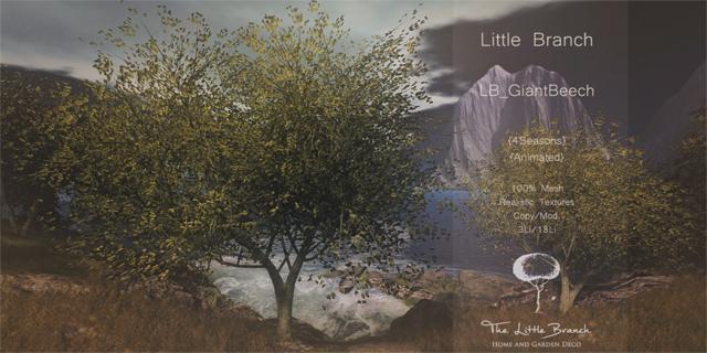 17012018 little branch sense event.jpg