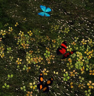 Bee Designs - Butterflies Gacha display - Cosmopolitan.jpg