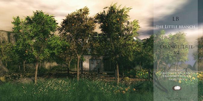 Little Branch - Orange Tree - Hello Tuesday.jpg