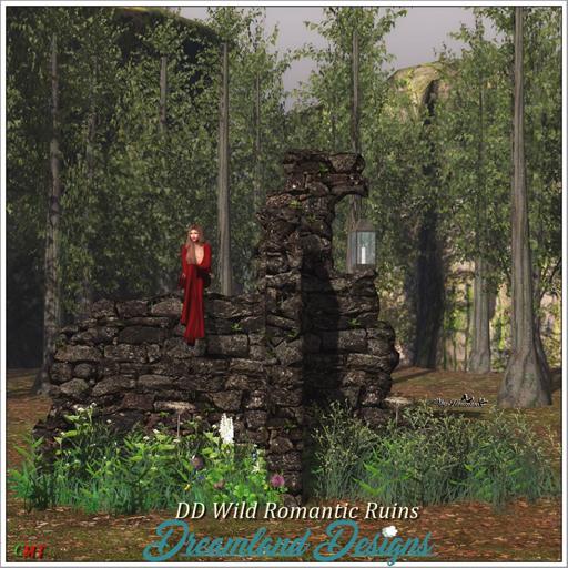 11022018 DD Wild Romantic Ruins swank.jpg