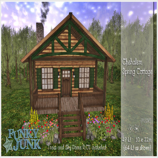 16022018  Funky Junk FLF.jpg