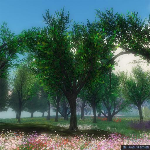 24022018 hayabusa Oak Tree bundle - 8 Trees included.jpg