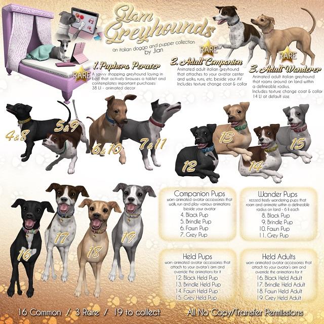 28022018 Jian Arcade Greyhounds.jpg