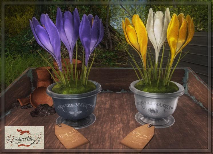 Vespertine - Spring Crocus Centerpiece - FLF.jpg