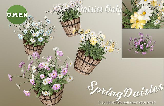 02032018 OMEN spring flowers  (1).jpg