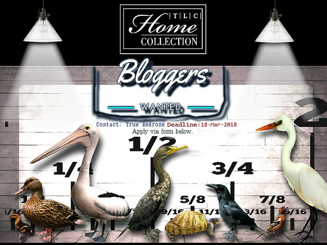 │T│L│C│ HOME COLLECTION - BLOGGER SEARCH