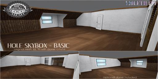 10032018 Violetility Hole Skybox Basic Sat sale.jpg
