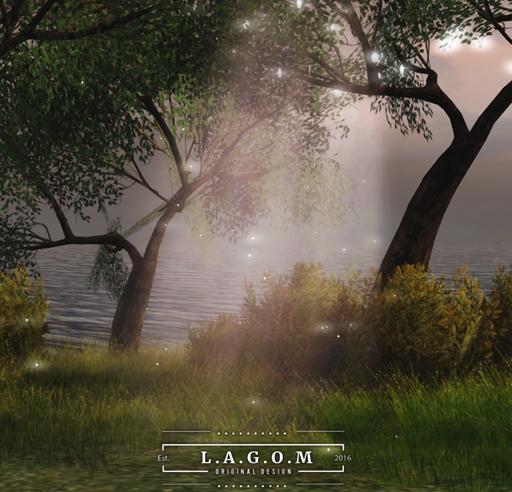 11032018 lagom FC_001.jpg