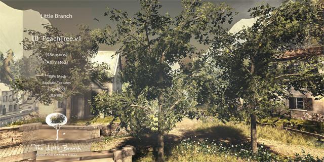 120132018 LB Pear Tree HT.jpg
