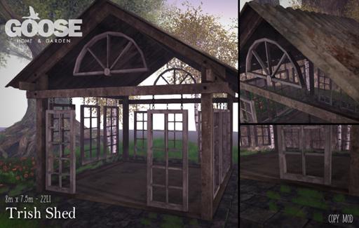 13032018 GOOSE - trish shed.jpg