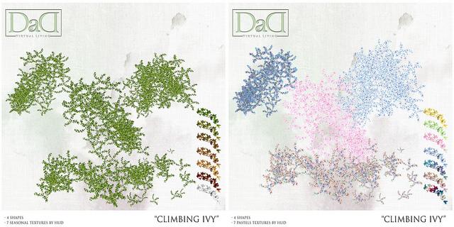 Dad Viritual Living - Climbing Ivy - Collabor88.jpg
